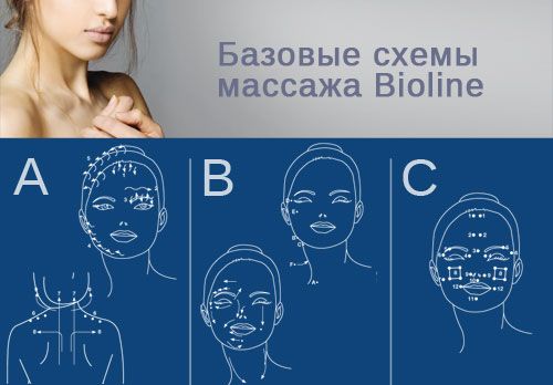 lineapiu_brochure.jpg